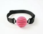 ball-gag-pink-webbing