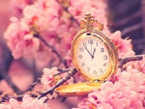 cherry-blossoms-clocks-1600x1200-hd-wallpaper