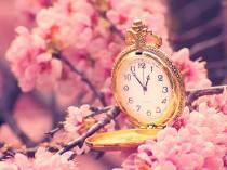 cherry-blossoms-clocks-1600x1200-hd-wallpaper